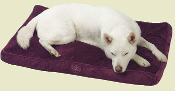 plush memory foam dog bed