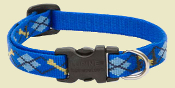 blue argyle dog collar