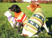Fair Isle Striped Dog Sweater