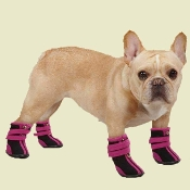 high top neoprene dog boots