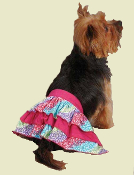 colorful dog skirt