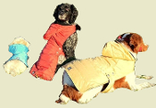 quilted hooded dog parka